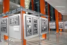 Выставочное оборудование PaloAlto